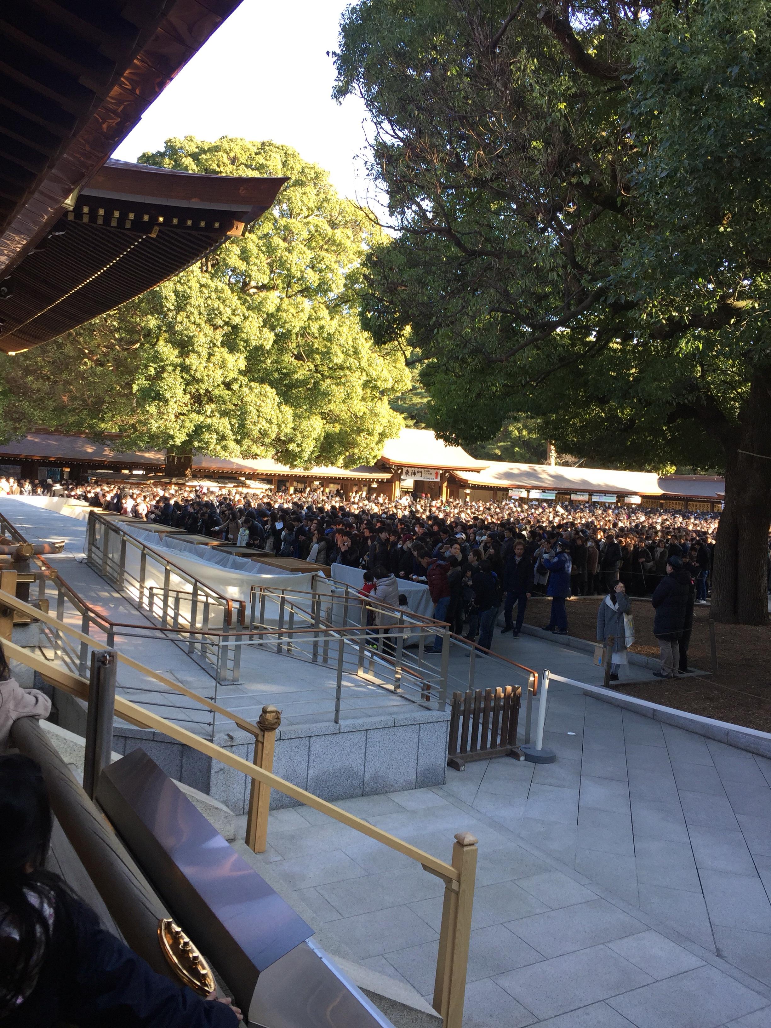 【保存版】明治神宮に初詣に行くときに知っておきたい豆知識