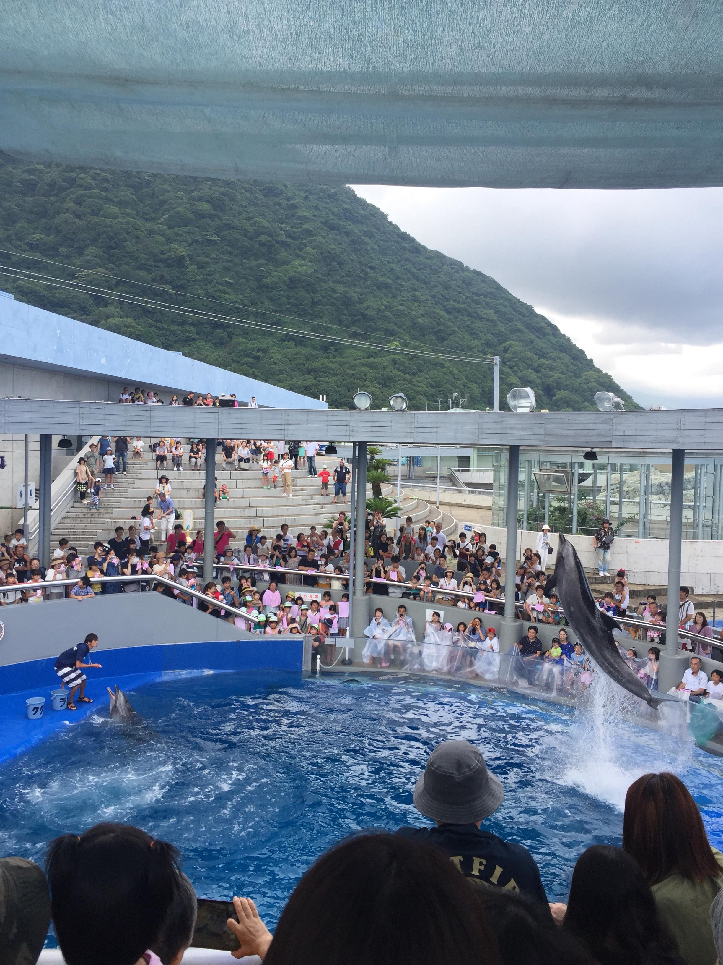 【大分】1日遊べる水族館『うみたまご』のここがすごい